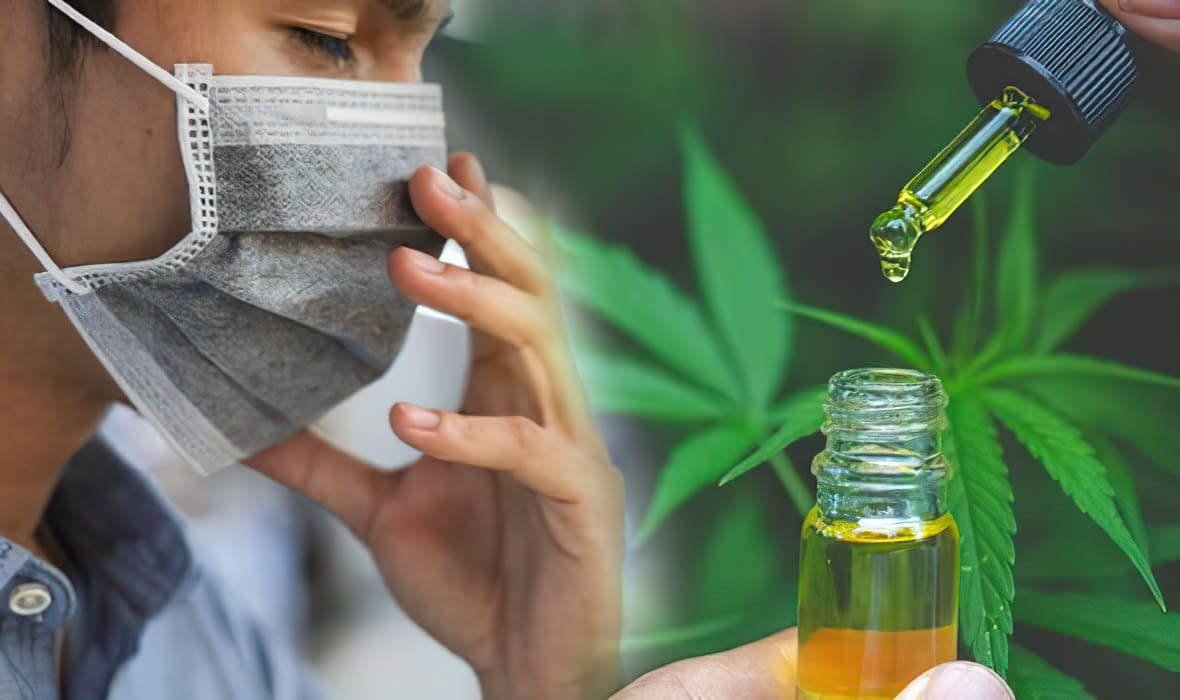 cbd-bible products and benefits